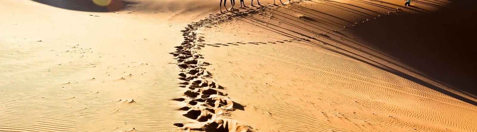 tourist-attractions-morocco1