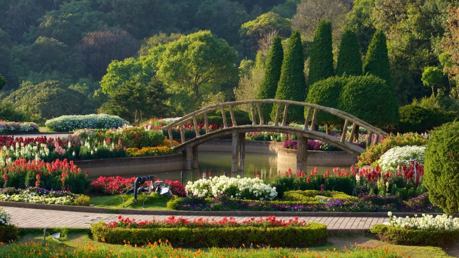 Discover South African Botanical Gardens