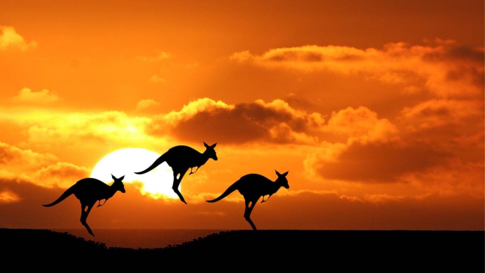 australia-tourist-attractions-3