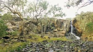 gallery-australia15