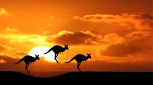 gallery-australia3