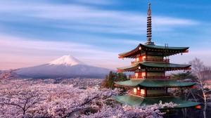 gallery-japan4