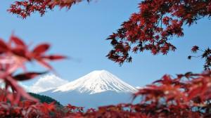 gallery-japan5
