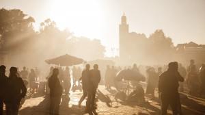 gallery-morocco11