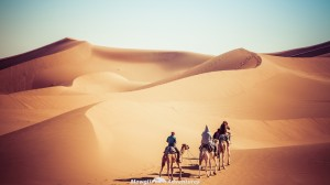 gallery-morocco18
