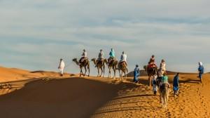 gallery-morocco3
