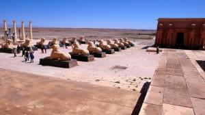 gallery-morocco5