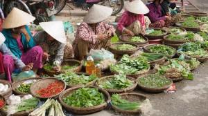 gallery-vietnam (13)