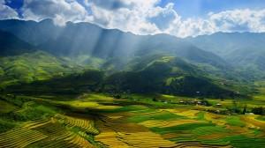 gallery-vietnam (14)